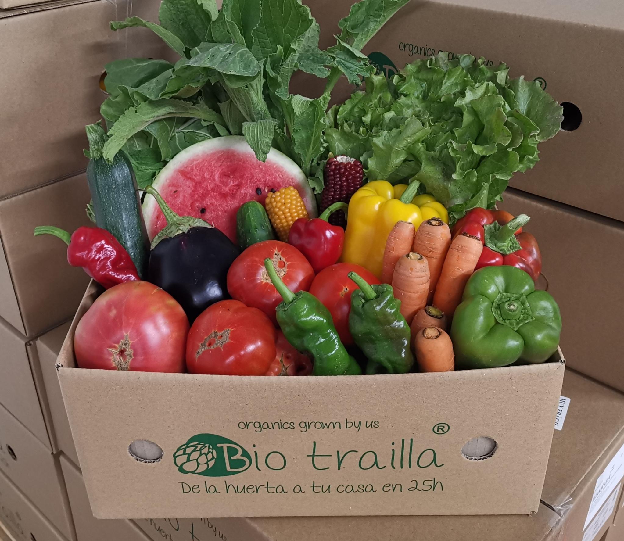 caja de fruta y verdura ecológico